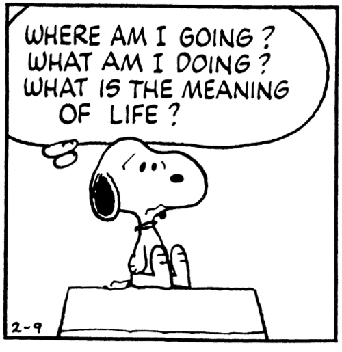 wbmeaning-of-lifesnoopy